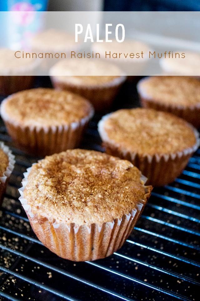 Paleo Cinnamon Raisin Harvest Muffins Step-by-Step | ApplestoZiti.com