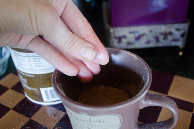 Chocolate Mug Cake | ApplestoZiti.com