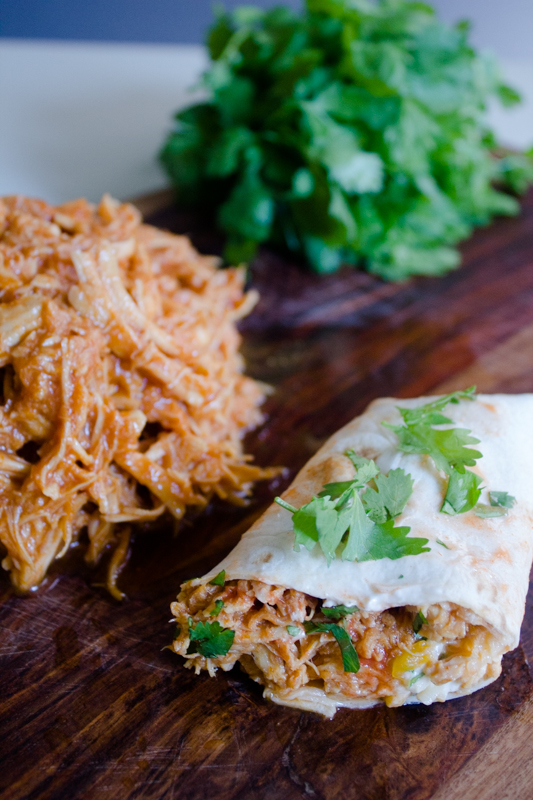Slow-Cooker Mexican Shredded Chicken | Cinco de Mayo Recipes | ApplestoZiti.com